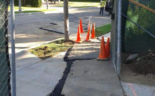 Tujunga Bonded Sewer Contractor